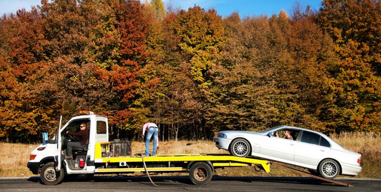 Los vehículos de auxilio en carretera no tendrán restricciones de movimiento.
